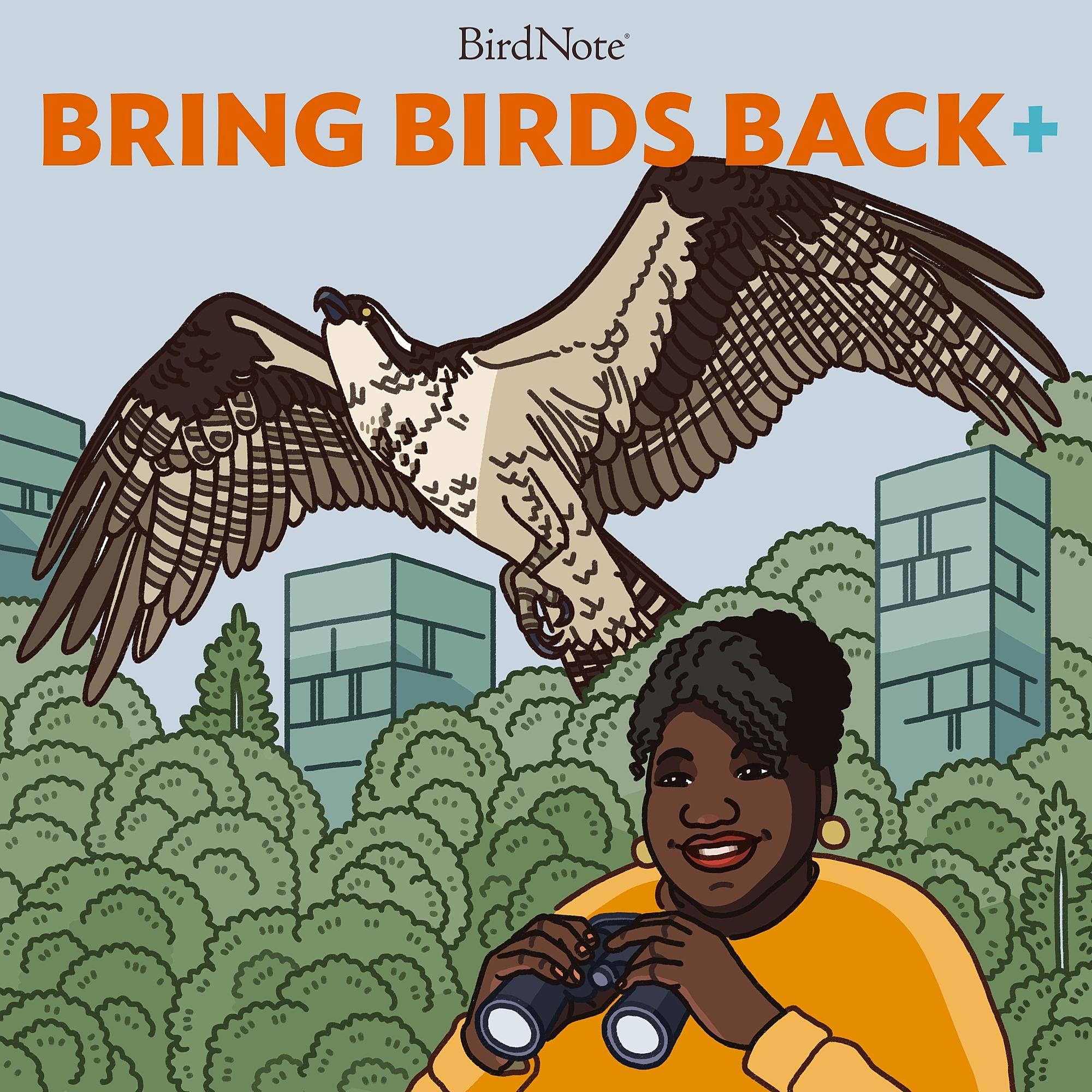 Bring Birds Back+